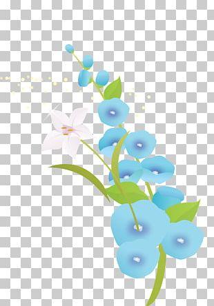 Petal Flower Floral Design Plant Stem PNG