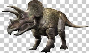 Carnivores: Dinosaur Hunter Torosaurus Triceratops Ceratopsia Tyrannosaurus PNG