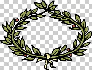 Laurel Wreath Crown Olive Wreath PNG