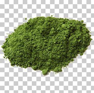 Matcha Green Tea Gyokuro Bai Mudan PNG