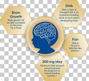 Docosahexaenoic Acid Brain Pharmaceutical Drug Agy Food PNG