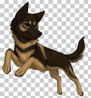 Whiskers Puppy Cat Dog Breed PNG