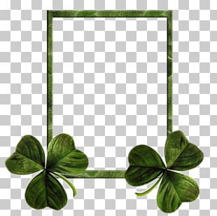 Ireland Saint Patricks Day Shamrock Clover Holiday PNG