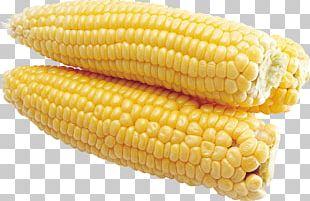 Flint Corn Corn On The Cob Sweet Corn Taco PNG