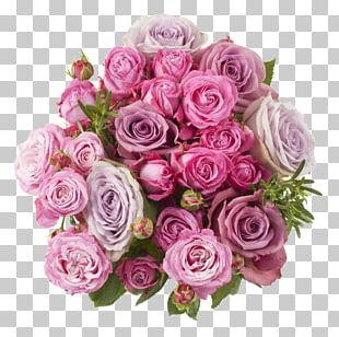 Garden Roses Cut Flowers Flower Bouquet Cabbage Rose Flower Delivery PNG