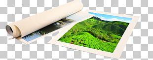 Canvas Print Printing Art Painting PNG
