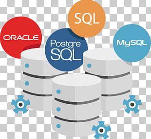 Web Development Software Development Database Software Developer Oracle SQL Developer PNG