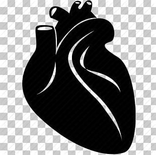 Heart Medicine Computer Icons Health Care Cardiology PNG