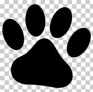 Dog Paw Cougar Drawing PNG