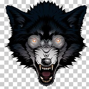 Gray Wolf Big Bad Wolf PNG