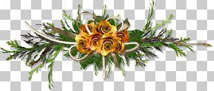 Floral Design Cut Flowers Petal PNG