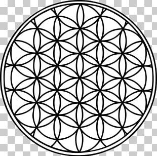Sacred Geometry Overlapping Circles Grid Symbol PNG