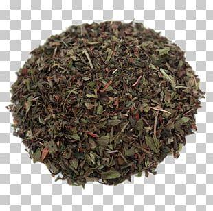 Oolong Green Tea Gunpowder Tea White Tea PNG
