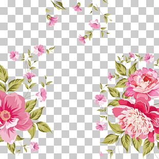 Rose Rose Background Material Sea PNG