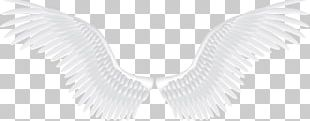 Angel Pattern PNG