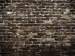 Brick Wall Photography Photographic Studio PNG