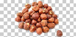 Hazelnut Raw Foodism Organic Food PNG