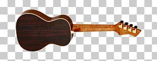 Musical Instruments Ukulele Guitar NAMM Show String PNG