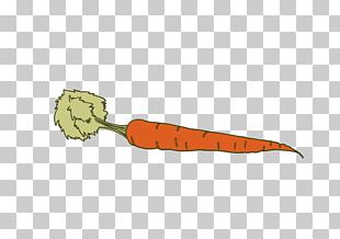 Carrot Vegetable Icon PNG