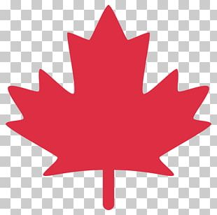 Flag Of Canada Maple Leaf PNG