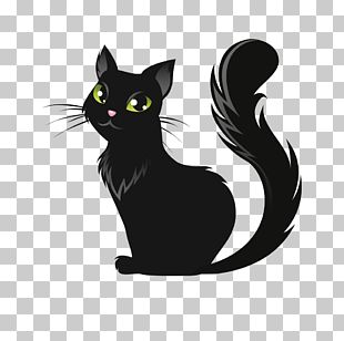 Cat Kitten Halloween Illustration PNG
