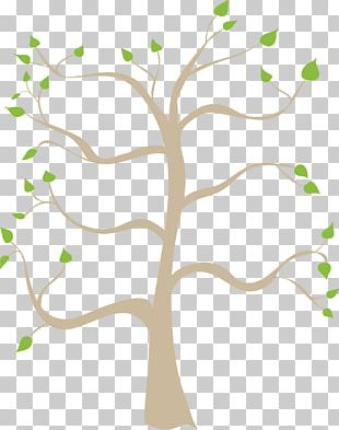 Family Tree Free Content PNG