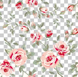 Rose Flower Floral Design Pattern PNG