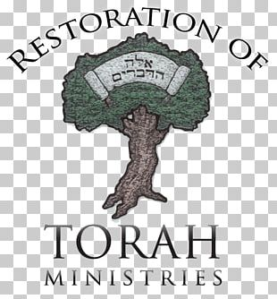 Weekly Torah Portion Devarim Ki Tissa Re'eh PNG