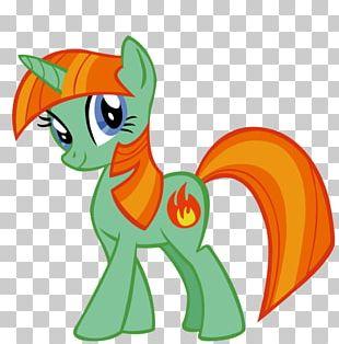 Twilight Sparkle Applejack Pony Rainbow Dash Pinkie Pie PNG