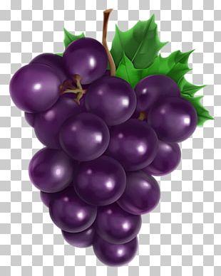 Common Grape Vine Grape Seed Oil Avocado Oil PNG