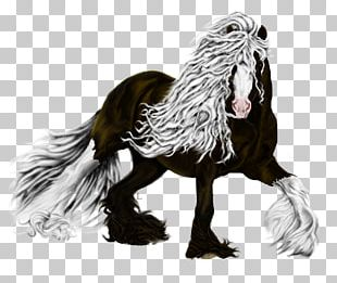Rooster Horse Legendary Creature Chicken As Food Feather PNG