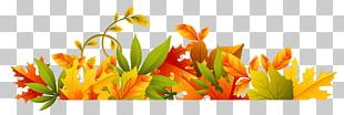 Autumn Computer File PNG
