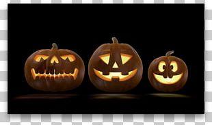 Jack-o'-lantern Halloween Pumpkin Holiday PNG