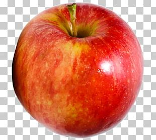 Apple Food Accessory Fruit PNG