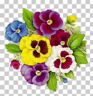 Pansy Decoupage Drawing Painting PNG
