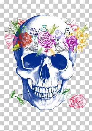 Calavera Human Skull Symbolism Flower Rose PNG