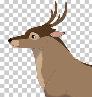 Elk Reindeer Fauna Snout Wildlife PNG