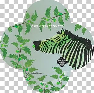 Green Zebra Aunt Ruby's German Green Salsa Seed Mexican Cuisine PNG