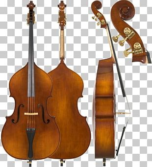 Cello Double Bass Violin String Instruments Musical Instruments PNG