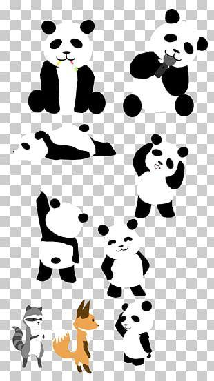 Giant Panda Drawing Doodle PNG