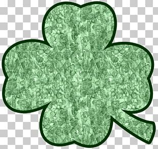 Rochester Four-leaf Clover Saint Patrick's Day PNG