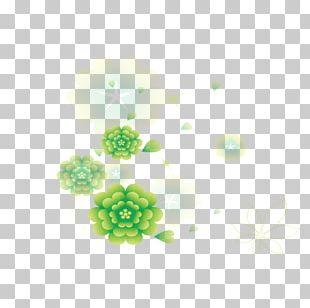 Green Leaf Petal Yellow PNG