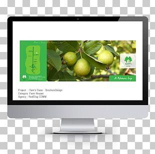 Digital Marketing Web Page Search Engine Optimization Digital Agency PNG
