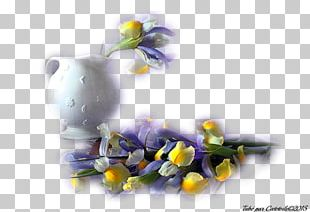 Petal Flower Vase Blue Rose Garden Roses PNG