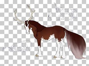 Mustang Cattle Reindeer Antelope Moose PNG