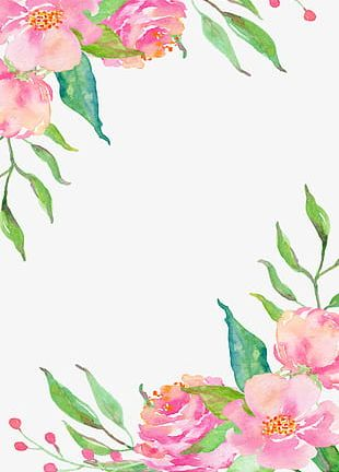 Pink Flower Borders PNG