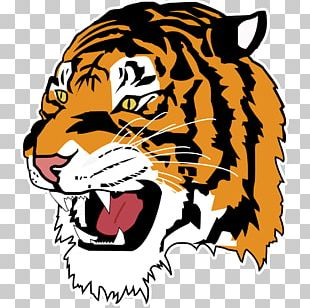 Detroit Tigers Sport Baseball Athlete PNG