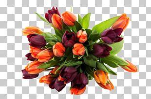 Flower Bouquet Desktop Rose PNG