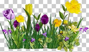 Flower Internet Spring PNG
