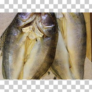 Kipper Sardine Oily Fish Fish Products Salted Fish PNG